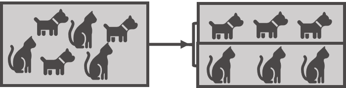 KI Hunde und Katzen Mustererkennung